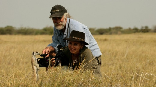 Dereck and Beverly Joubert observing a meerkat in the Okavango Delta, Botswana.